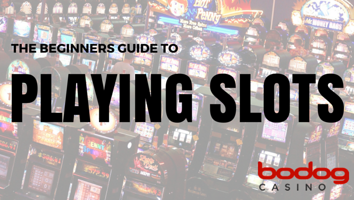 Beginners Guide to Playing Slots - Bodog Casino Blog