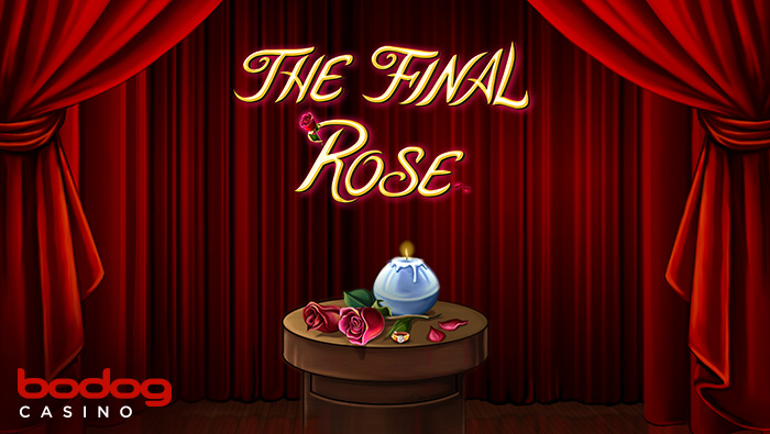 New Game: Final Rose